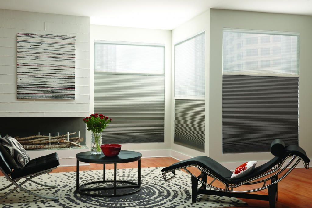 Grey Room Top Down Bottom Up Cell Shades
